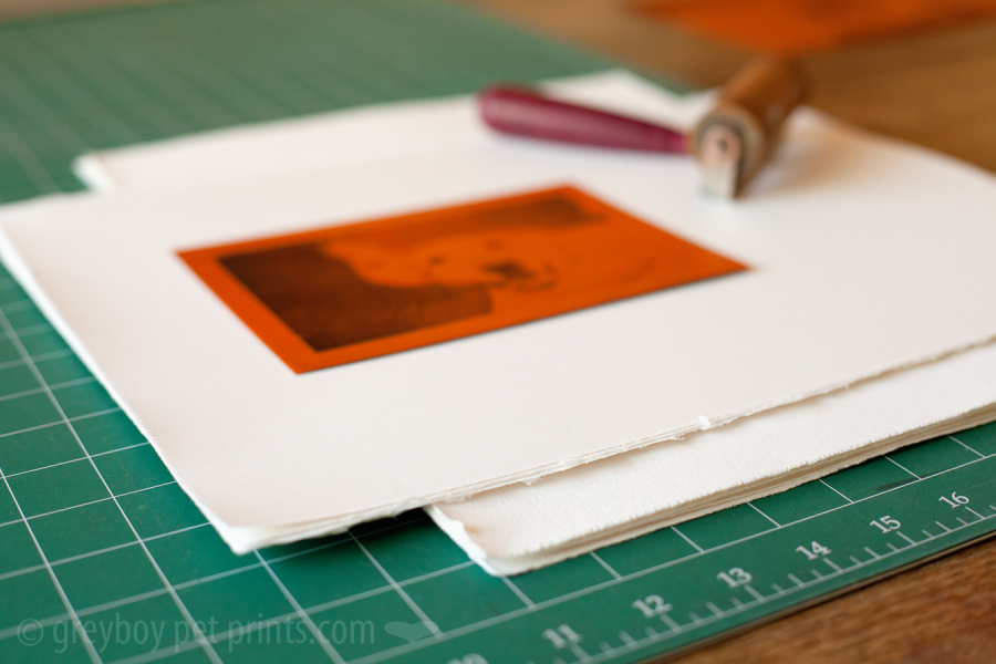 plate - paper and brayer