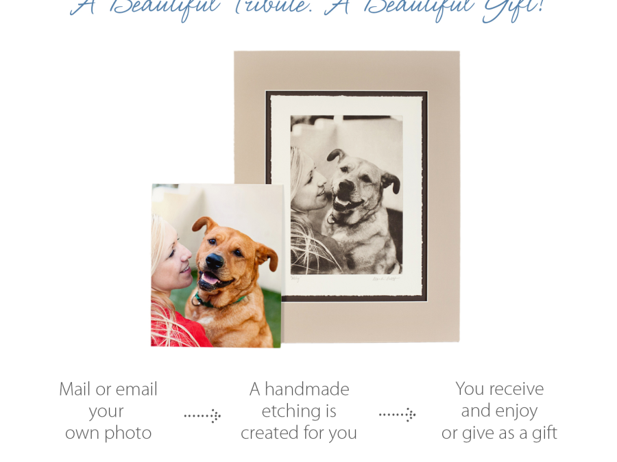 Pet Photography Etching Gift