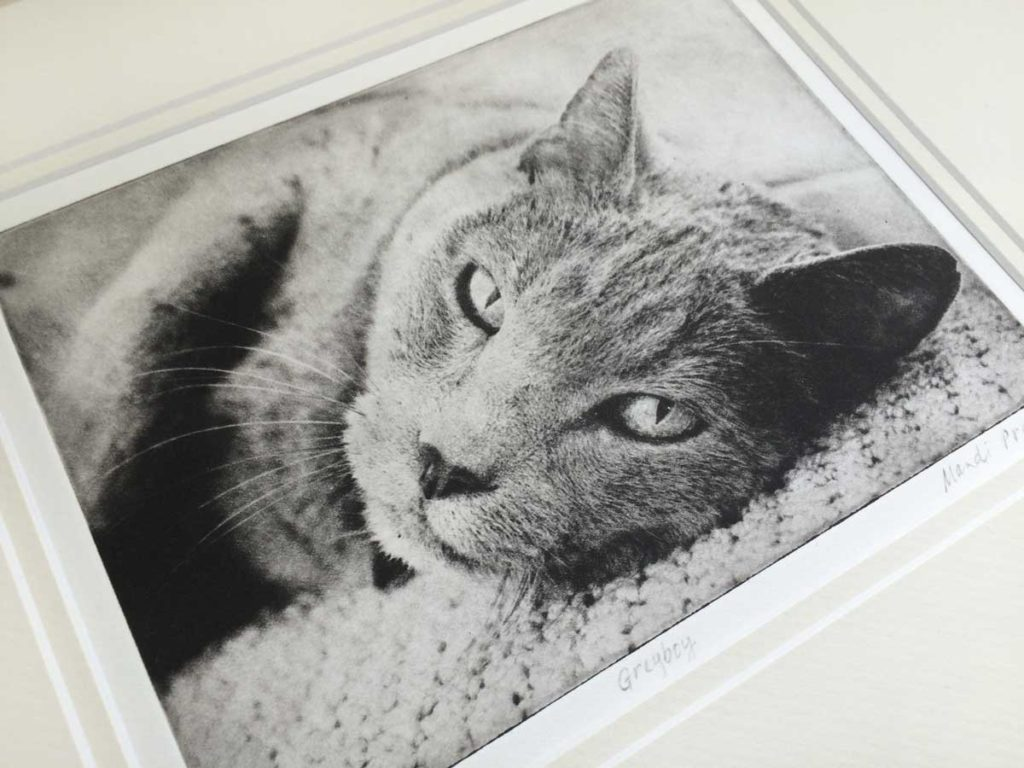 Greyboy-Pet-Prints-Etching-2