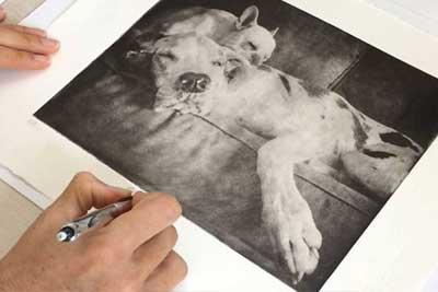 custom dog art two dogs