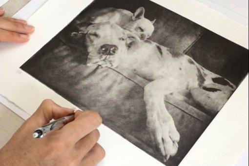 signing-pet-portrait