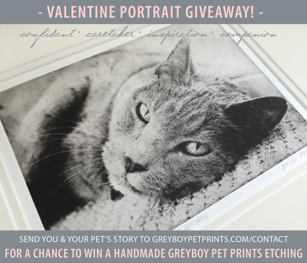 Valentine-Pet-Portrait