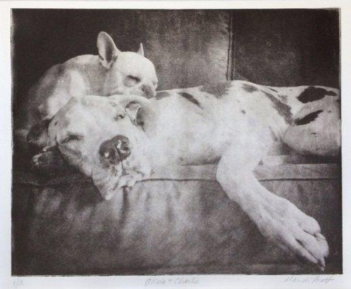 pet-memorial-portrait