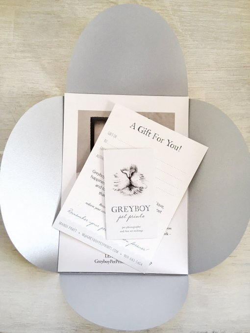 Gift Certificate Greyboy Pet Portraits