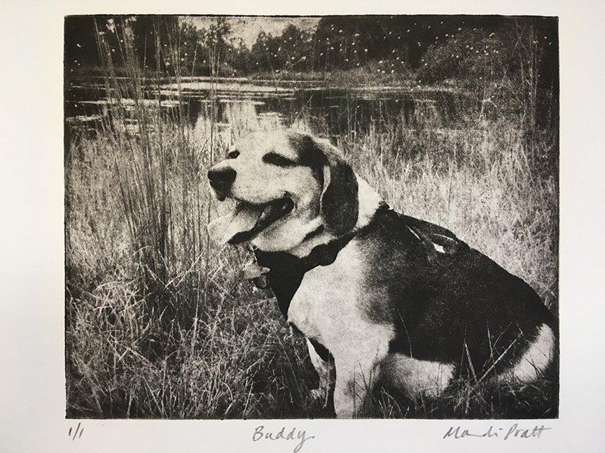 Beagle-Dog-Art-Etching