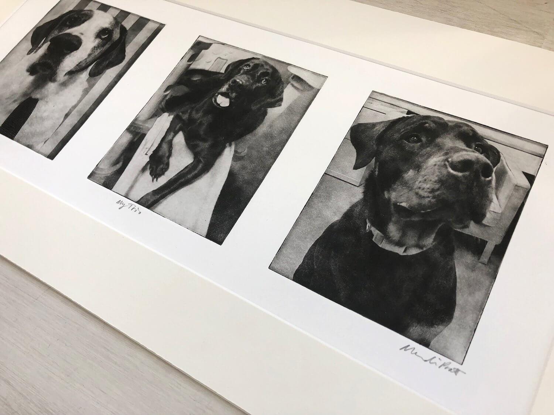 Pet-Portrait-Collage