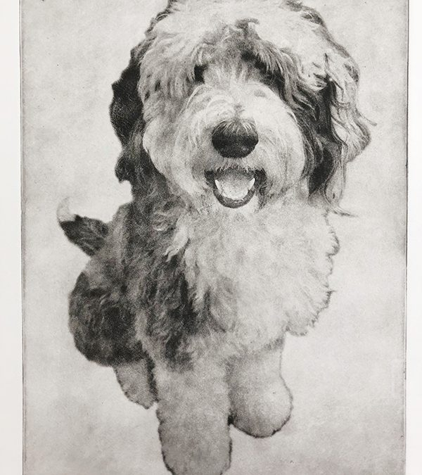 Custom Dog Portrait Etching | Ted