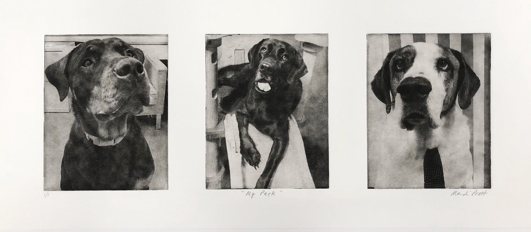 Dog Art Collage of 3 Loved Dogs