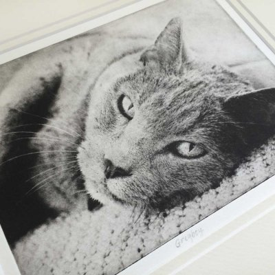 Custom Pet Art Etching