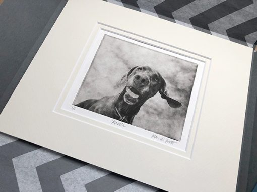 Custom-Dog-Portrait-Packaged-Beautifully