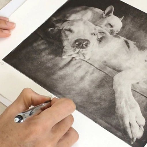 Custom-Dog-Portrait-Being-Signed