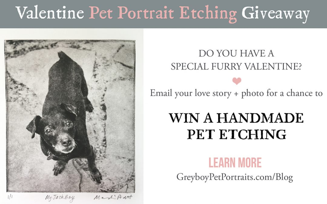Valentine Pet Portrait Giveaway and Mini Art