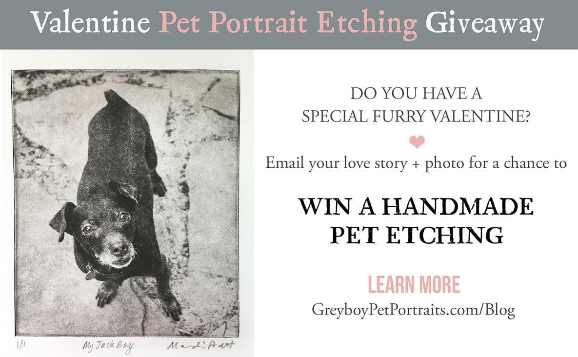 Valentine-Pet-Portrait-Etching-Giveaway