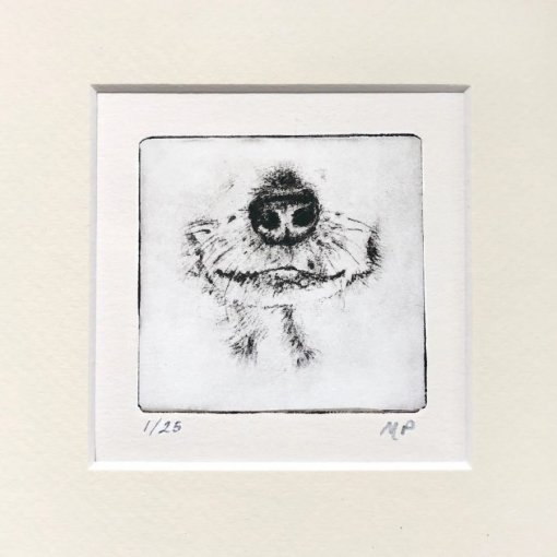 Chihuahua Dog portrait of cute Chi face by Greyboy Pet Prints
