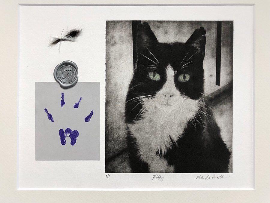 Pawprint Impression Mold for Pet Memorial Art