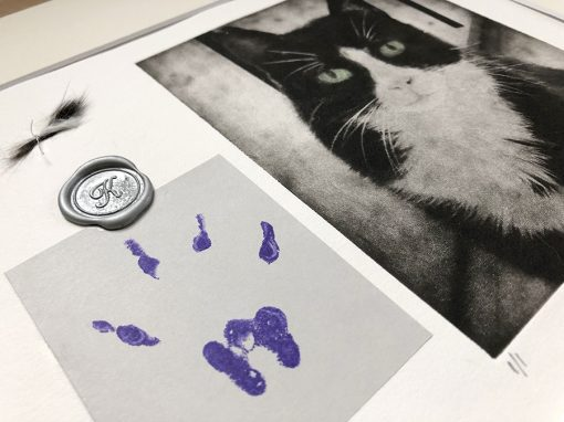 paw print and art to remember kitty