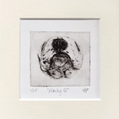 Art of English Bulldog Nose etched by SoCal artist Mandi Pratt