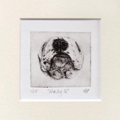 Art of English Bulldog Nose etched by SoCal artist Mandi Pratt