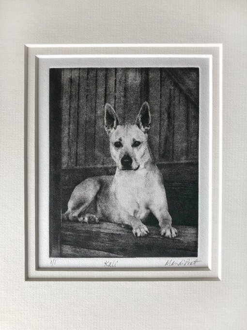 Dog Portraits for Heroes