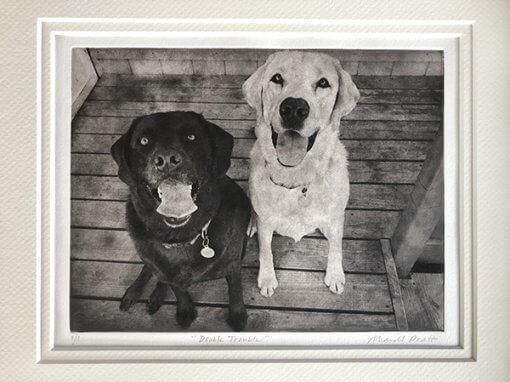 Multiple Dogs Custom Dog Portrait
