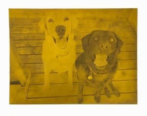 Multiple Dogs Custom Dog Portrait Etched Plate