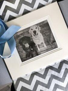 Multiple Dogs Custom Dog Portrait Packaged