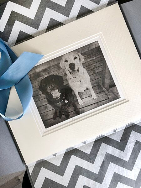Multiple Dogs Custom Dog Portrait Packaged
