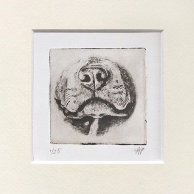 Pitbull Dog Art Cute Nose in Mat