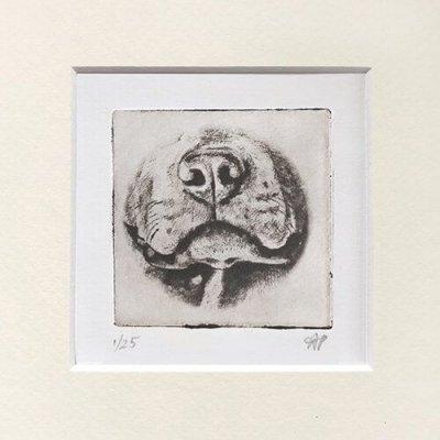 Pitbull Dog Art Cute Nose in Mat