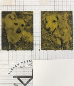 Dog art in progress etched metal plates