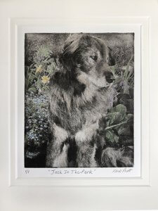 hand colored dog portrait remembering dog Jack the shepherd outside by flowers in the wind