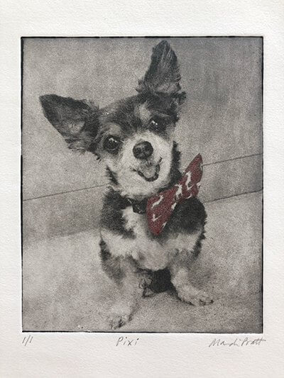 cute handmade dog portrait of chihuahua as gift for pet loss