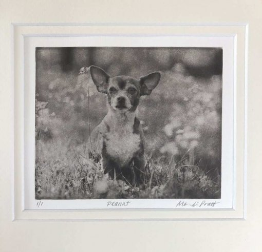 Custom Dog Portrait Vintage Style of Adorable Chihuahua