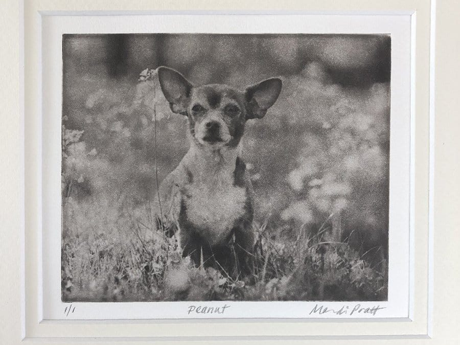 Custom Dog Portrait Vintage Style | Peanut