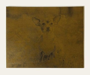 Chihuahua photo etched into a metal plate