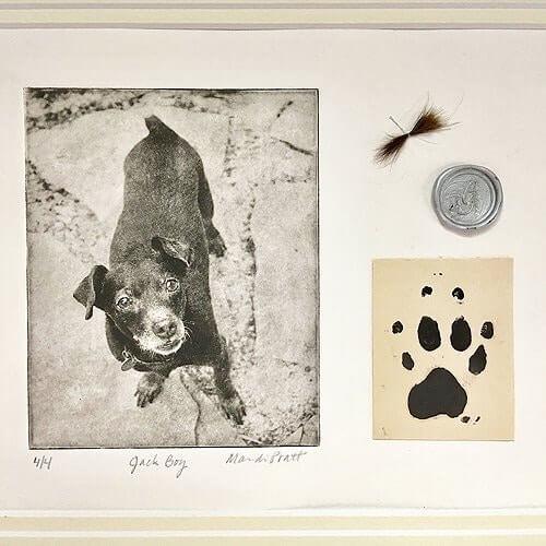 Dog-Art-Ash-Pawprint-Memorial-Portrait-Matted