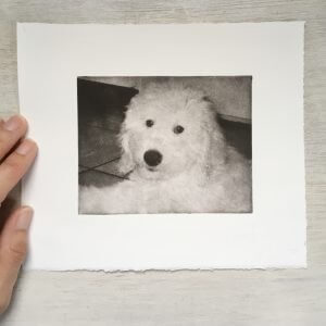 Etched dog art of cute doodle puppy pressed into fine art paper