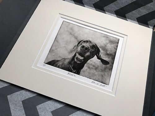 matted etched custom dog art portrait of weimaraner package