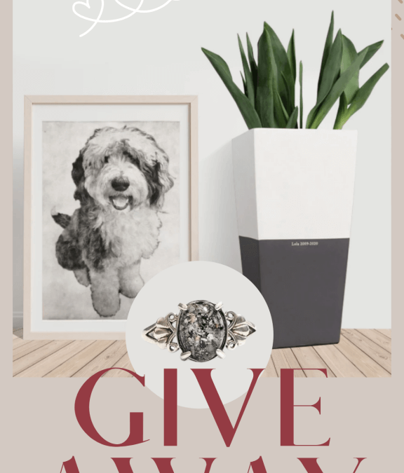 Perfect Valentine gifts for dog moms and CAT dads – a giveaway