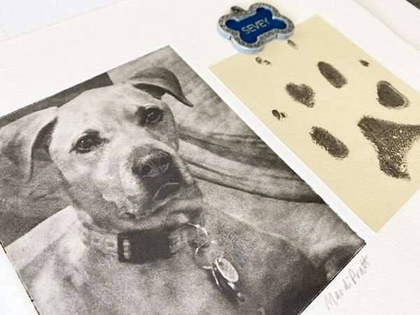 Dog-Paw-Print-Art-from-photo with dog tag