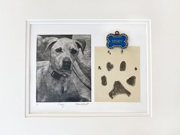 Dog Paw Print Art For Sevey