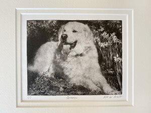 Dog Portrait Gifts for Gunner