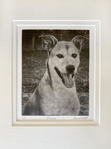 Dog Portrait Gift for Dad of Simba