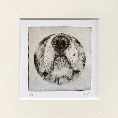 Cavalier Portrait Dog Nose Print