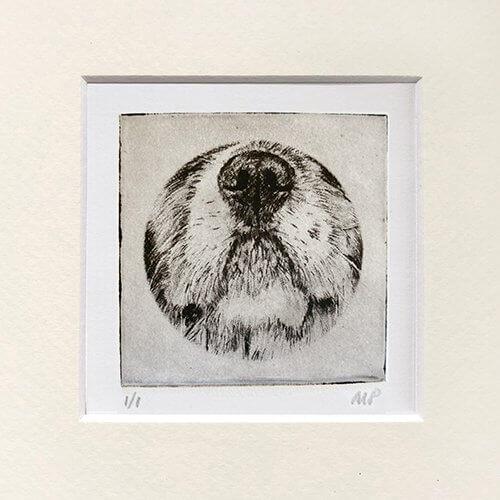 Cavalier Portrait Dog Nose Print
