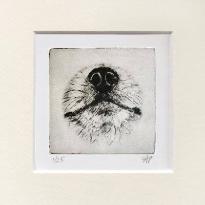 Pomeranian-Portrait-Dog-Nose-Print