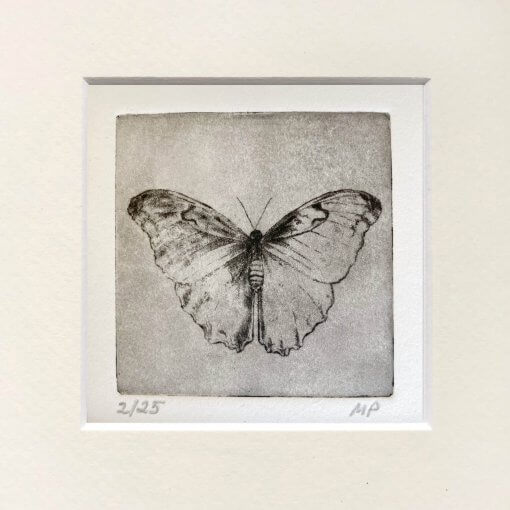 Butterfly Art Small Etching