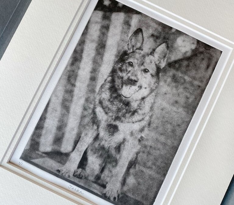 Dog Portrait Gift For a Military Working Dog   Jaska