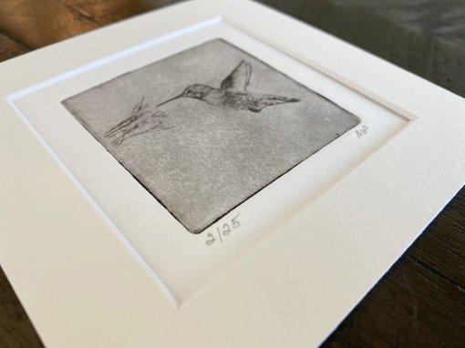 Hummingbird-Art-Detail-Etched-Print