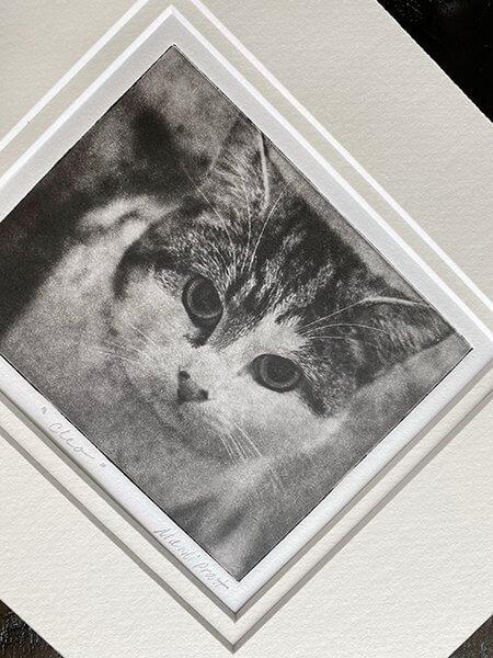 Custom Pet Portrait for Kitty in Double Mat